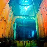 Foto di Kittiwake Shipwreck & Artificial Reef