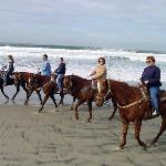 take your family on a wonderful ride on Monterey Bay