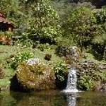Trogon Lodge San Gerardo de Dota Thumbnail