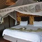 Thakadu River Camp Thumbnail