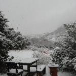 A rare snowstorm