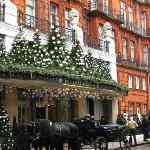Claridges in its festive mood