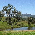 Country side around Brogo