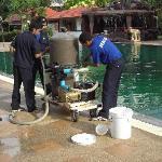 """Das """"umgekippte"""" Wasser im Pool wurde chemisch """"gereingt"""", ohne daß der Pool gesperrt wurde."""