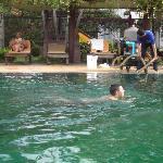 """Während der """"Reinigung der krankmachenden Brühe ließ man sorglos die Gäste weiter schwimmen!"""