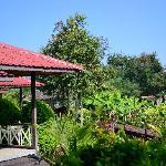 bunglaow and gardens