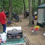 Pinederosa Camping Area Thumbnail