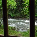 from the cabin, Mindo Ecuador