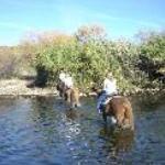 Saguaro Lake Ranch Thumbnail
