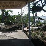 Patey's Place Hostel Thumbnail