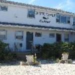 White Whale Motel Thumbnail