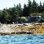 Bar Harbor Campground KOA Thumbnail