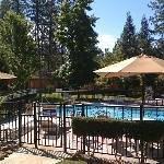 Ponderosa Gardens Motel Thumbnail