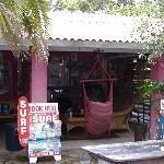 Dolphins Beach House Thumbnail