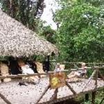 Cuyabeno Lodge Thumbnail