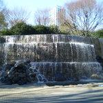 Shinjuku Chuo Park