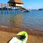 Foto van Seagull Cove Resort