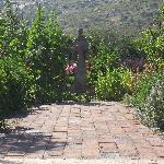 statue of a Saint in organic garden