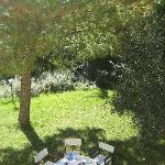garden with magnificent view