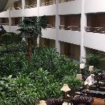 A gigantic plant atrium by the guest rooms
