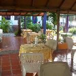 terrasse / petit déjeuner