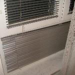 Window with fashionable blinds