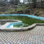 neglected pool, a health hazard