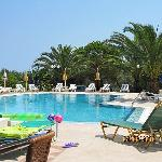 SUNFLOWER APARTMENTS & STUDIOS LAGANAS ZANTE