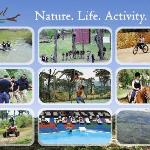 Nature. Life. Activity.