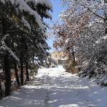 Winter at Panfili