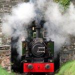 Coal fired steam locomotives