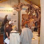 sala Patagonia 10.000 años atras