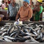 al mercato del pesce