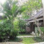 Villa's little tropical garden