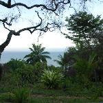 Blick aus dem Bungalowfenster