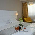 水星酒店布雷斯城堡村鎮酒店