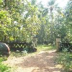 Gitanjali Heritage home stay