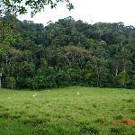 the surrounding area