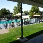 toujours la piscine