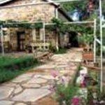 Most Bedrooms open onto Vineyard and gardens