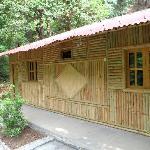 Bamboo Hut exterior