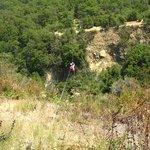 Foto de Viña La Montaña