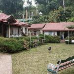 Lawn & Reception (1)
