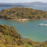 Paterson Inlet Cruises - Stewart Island Experience Foto