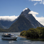 Milford Sound Scenic Cruises - Real Journeys