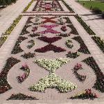 Eine schöne Gartenanlage