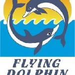 flying dolphin logo