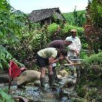 Sur la route, arrêt à de véritables sources d'eau chaude naturelles et privées !