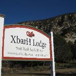 People & Pet Friendly Accommodations in southern Utah