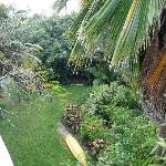 View of the garden from deck